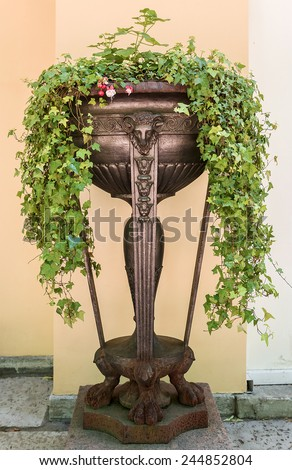 cast iron pot with flowers - stock photo