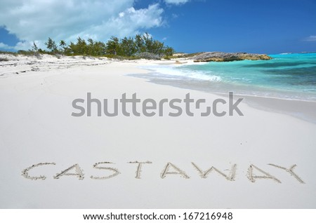 castaway essay There are a lot of famous talented actors and actress in the world but my favourite who i like and admire is tom hanks he s well known all over the world.
