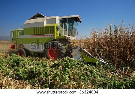 Castegnato (Bs),Franciacorta,Lombardy,Italy,the threshing of a field of corn