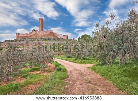 Castiglion Fiorentino, Arezzo, Tuscany, Italy: the medieval castle of Montecchio Vesponi in the country with olive tree groves