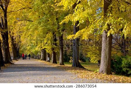 Castle Garden in Autumn - stock photo