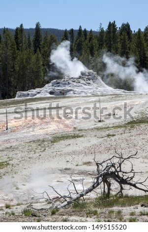 Castle Geyser, Yellowstone national park, USA - stock photo