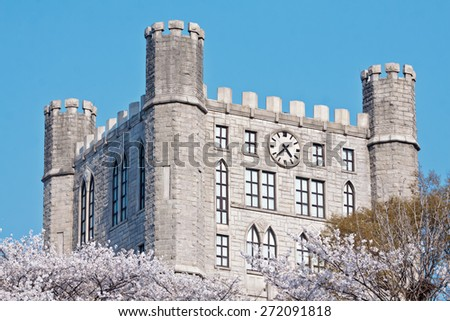 Castle tower with clock and blooming cherry trees in a sunny spring day - stock photo