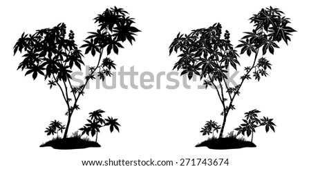 Castor Plant with Leaves, Fruits and Grass Black Contours and Silhouette Isolated on White Background.  - stock photo