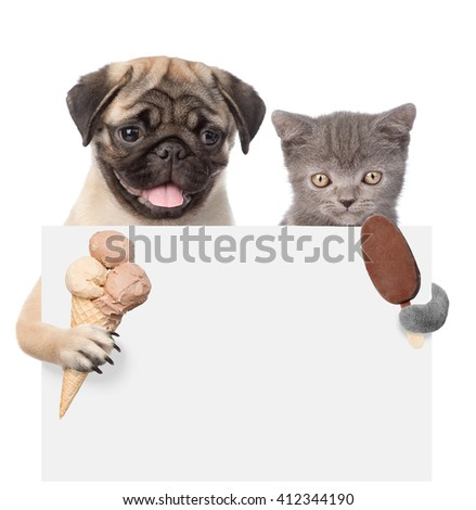 Cat and dog holding ice cream and peeking from behind empty board. isolated on white background - stock photo