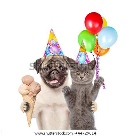 Cat and Dog in birthday hats holding balloons and ice cream. isolated on white background