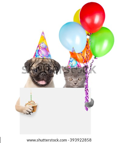 Cat and dog in birthday hats holding cake and balloons peeking from behind empty board. isolated on white background - stock photo