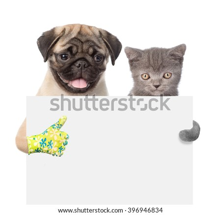 Cat and Dog peeking from behind empty board and showing thumbs up. isolated on white background - stock photo