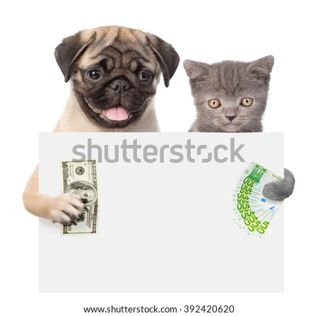Cat and Dog peeking from behind empty board holding money. isolated on white background - stock photo