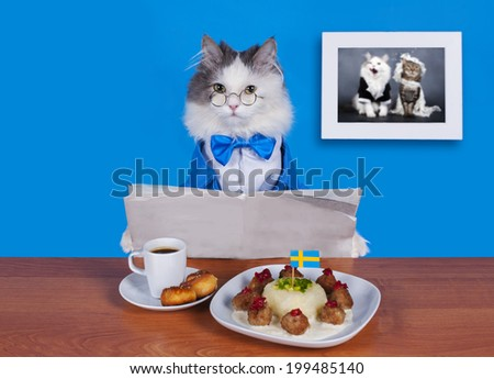 cat businessman lunch Swedish meatballs - stock photo