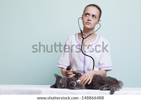 cat clinic - stock photo