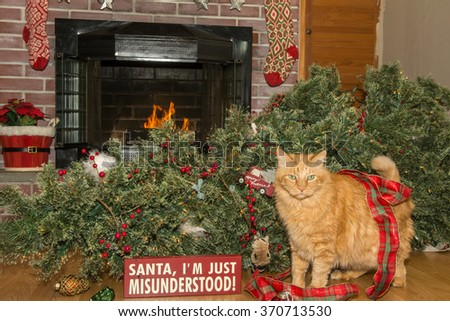 Cat Destroys Christmas - stock photo