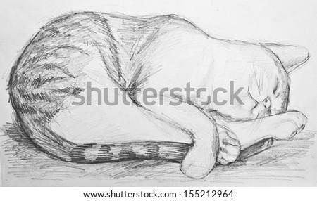 Cat drawing - stock photo