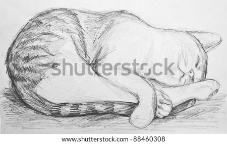 Cat drawing - stock photo