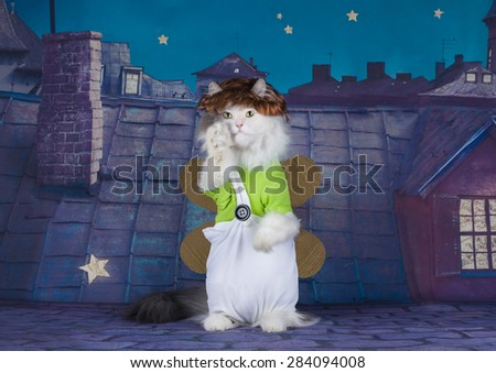 cat dressed Carlson stands on the roof - stock photo