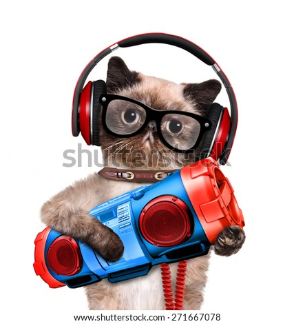 Cat headphones with tape recorder. - stock photo