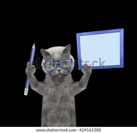 cat holding a pencil and blank -- isolated on black - stock photo