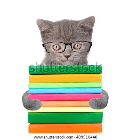 Cat holding books. isolated on white background - stock photo