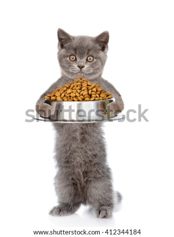 Cat holding bowl of dry food. isolated on white background