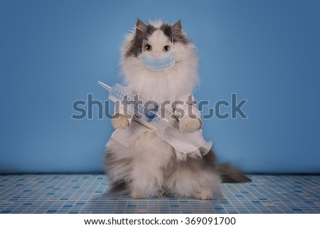 Cat in a suit doctor tells how to deal with the epidemic of influenza - stock photo