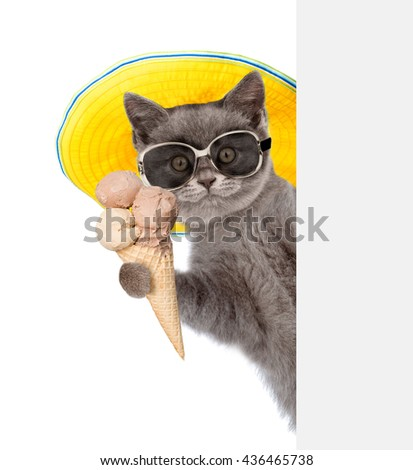 Cat in sunglasses and hat holding ice cream and peeking from behind empty board. isolated on white background - stock photo
