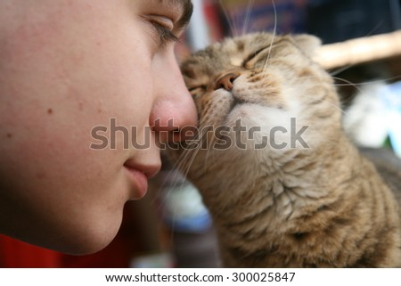 Cat rubs against the human nose