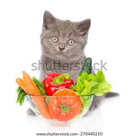 cat sitting with a bowl of vegetables. isolated on white background - stock photo