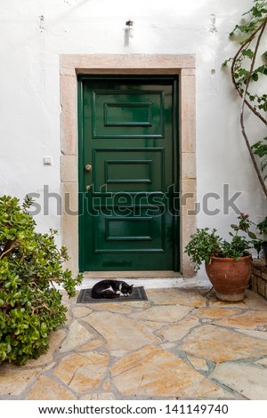 Cat sleeping in front of the closed door in greek countryside