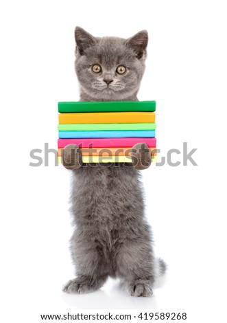 Cat standing on hind legs and holding a stack of books. isolated on white background