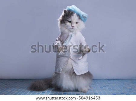 cat suit surgeon preparing for surgery