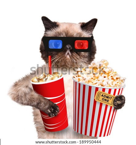 Cat watching a movie - stock photo