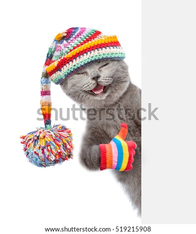 Cat wearing a warm hat peeking from behind empty board and showing thumbs up. isolated on white background