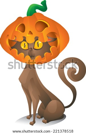 cat with pumpkin head