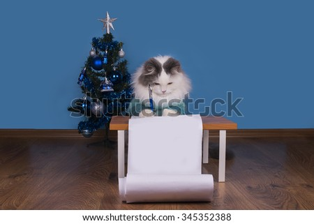 Cat writes a letter to Santa Claus - stock photo