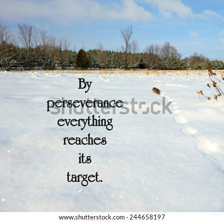 Catalan proverb with inspirational words about perseverance with a little mouse trudging through the snow, trying to reach the cover of the distant forest.