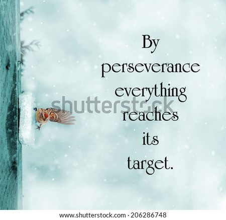 Catalan proverb with inspirational words about perseverance with a little sparrow struggling to survive in the winter, cyanotype toned image. - stock photo