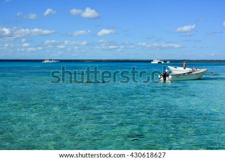 CATALINA, DOMINICAN REPUBLIC - JANUARY 16, 2016 - Caribbean, tropical island of Catalina in Dominican Republic coconut palms and white sand vacaze relaxing in the sun