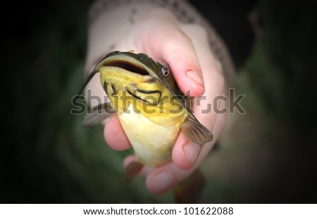 Catch and Release - stock photo