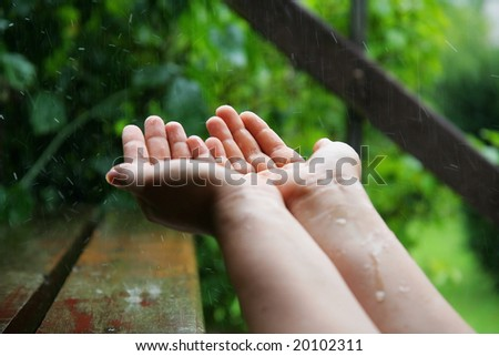 Catching the raindrops in the garden
