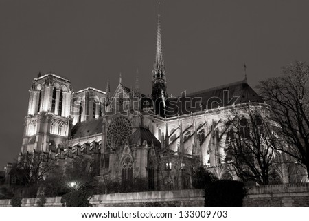 cathedral Notre Dame de Paris at night
