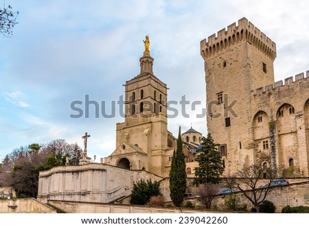 Cathedral Notre-Dame des Doms of Avignon, France - stock photo