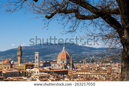 Cathedral of Saint Mary of the Flower (Cattedrale di Santa Maria del Fiore) and tree without leaves in the foreground. Florence, Tuscany, Italy. - stock photo
