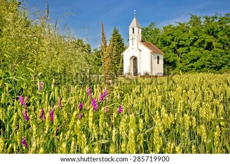 Catholic chapel in rural agricultural landscape, hay field in Cepidlak village of Croatia - stock photo