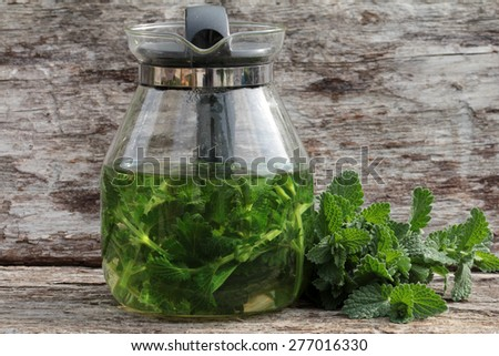catnip herb tea - stock photo