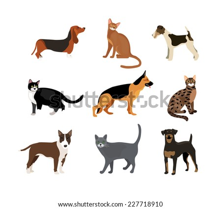 Cats and dogs illustration showing different breeds including a rottweiler  fox terrier  bloodhound   german shepherd and pitbull and different fur color in the cats - stock photo