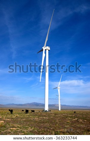 Cattle grazing on a wind farm with wind turbines turning overhead. The Cattle use the wind turbine as shade out on the high mountain desert range.