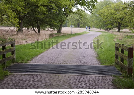 Cattle grid in road, Sellingen, Groningen, Netherlands