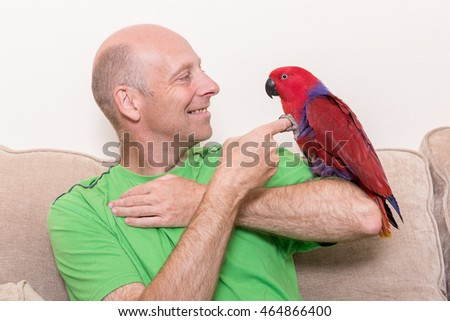 Caucasian man smiling at a tame red Eclectus parrot sat on his arm