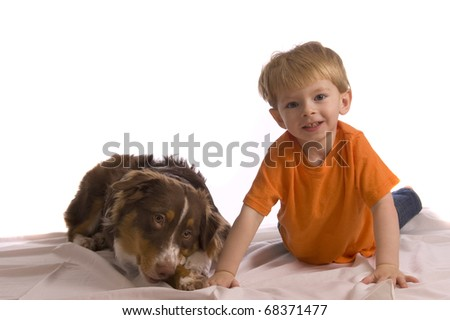 Caucasian toddler posing with his brown Australian Shepherd puppy. Isolated on white, looking into the camera, both model released. - stock photo