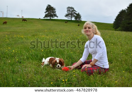 Cavalier King Charles Spaniel Blenheim dog and woman playing in a meadow